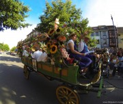 corso-fleuri-selestat-tourisme-alsace-2
