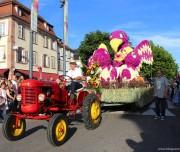 corso-fleuri-selestat-tourisme-alsace-21