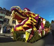 corso-fleuri-selestat-tourisme-alsace-5