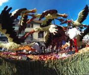 corso-fleuri-selestat-tourisme-alsace-9