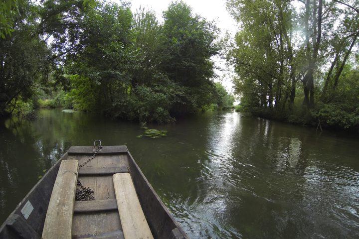 balade-barque-grand-ried-alsace-1