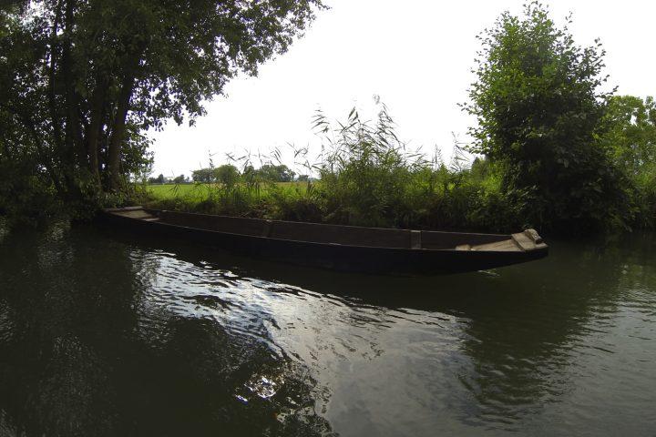 balade-barque-grand-ried-alsace-2