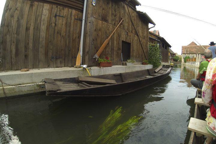 balade-barque-grand-ried-alsace-3