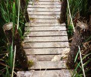 ferme-aventure-blog-voyage-40
