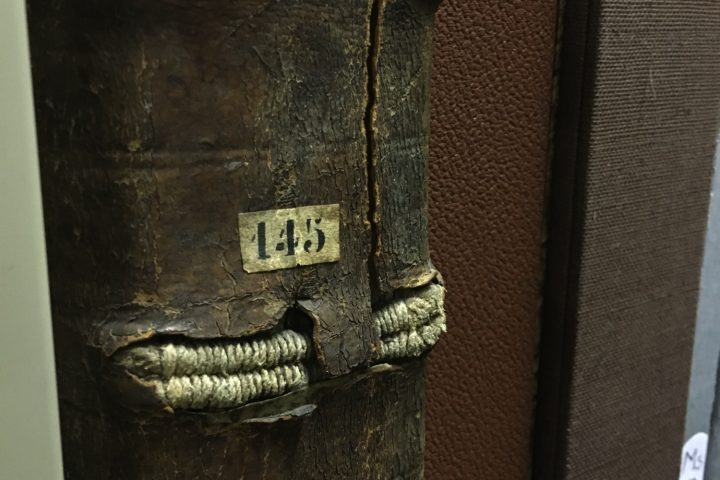 visite-bibliotheque-colmar-2-11