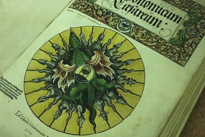 visite-bibliotheque-colmar-2-6