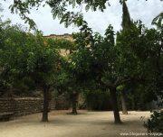 blog-voyage-provence-france-284
