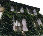 blog-voyage-provence-france-319