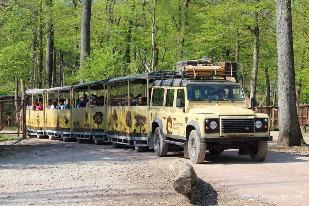 blog-voyage-parc-animalier-sainte-croix-24