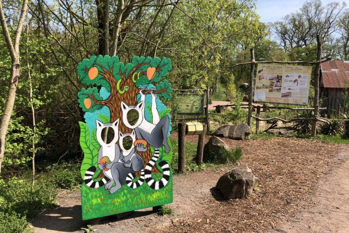 blog-voyage-parc-animalier-sainte-croix-252