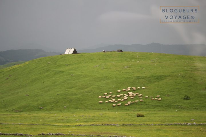 blog-voyage-montenegro-durmitor-lac-noir-74