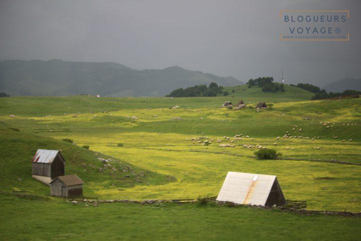 blog-voyage-montenegro-durmitor-lac-noir-78