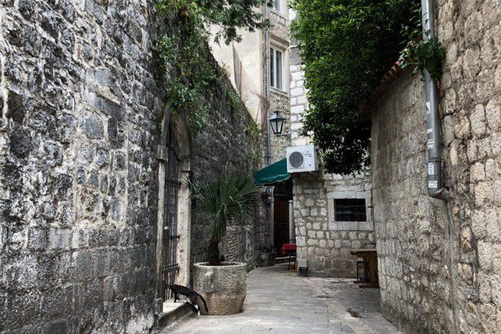blog-voyage-montenegro-kotor-51