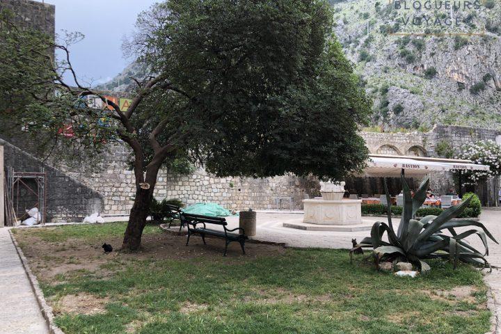 blog-voyage-montenegro-kotor-99