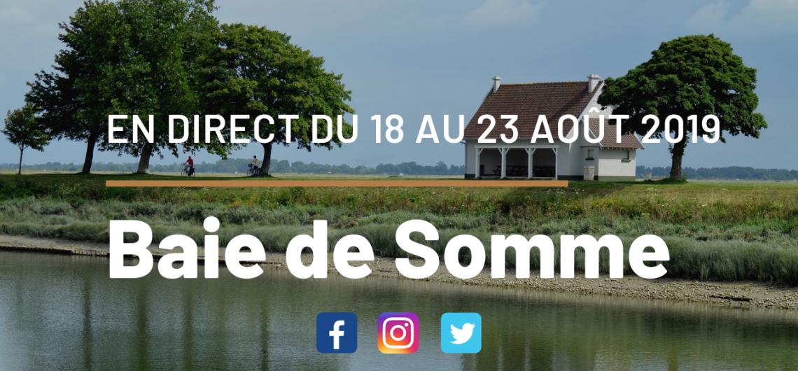 blog-voyage-baie-de-somme