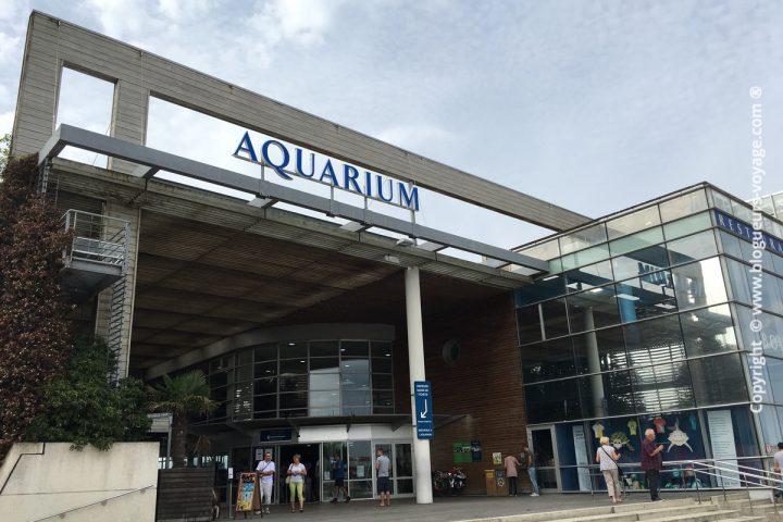 blog-voyage-aquarium-la-rochelle-Charente-Maritime