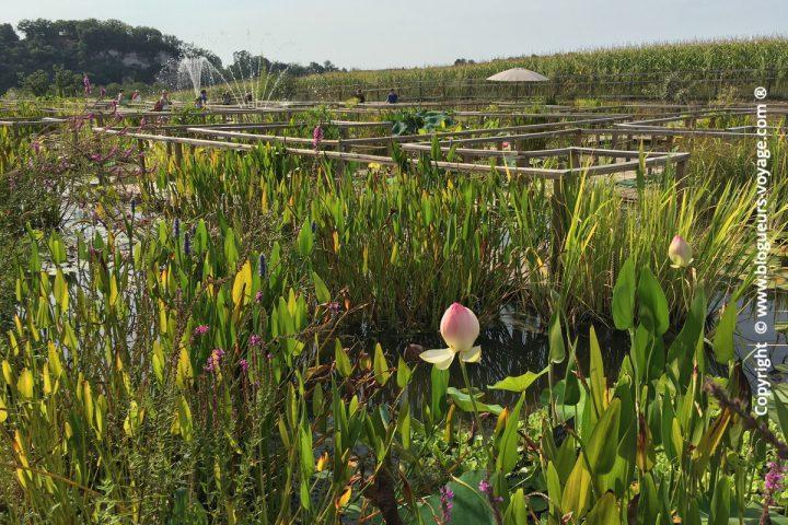 Les Jardins d'Eau dans le Périgord